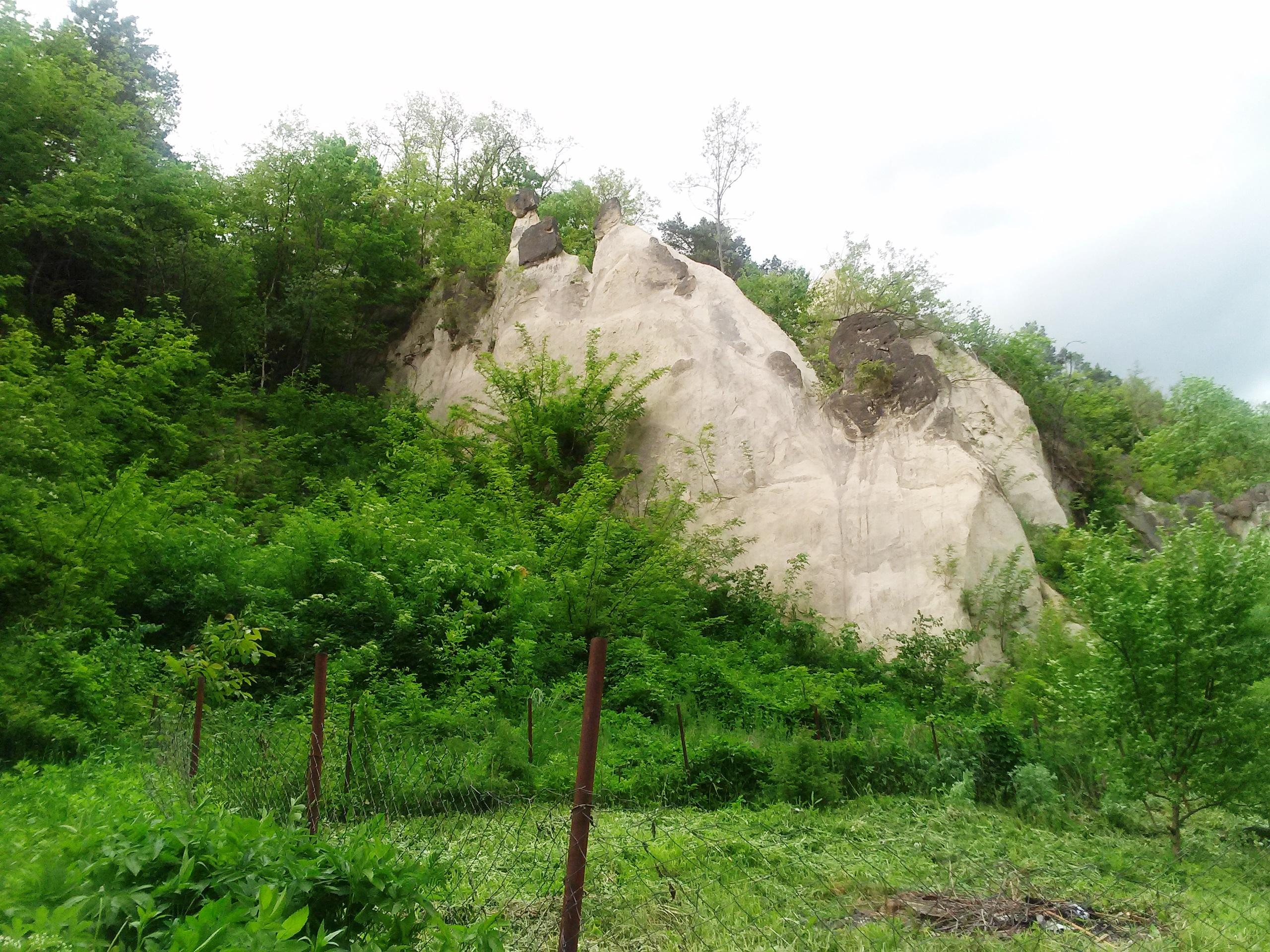 Міська (Замкова) гора
