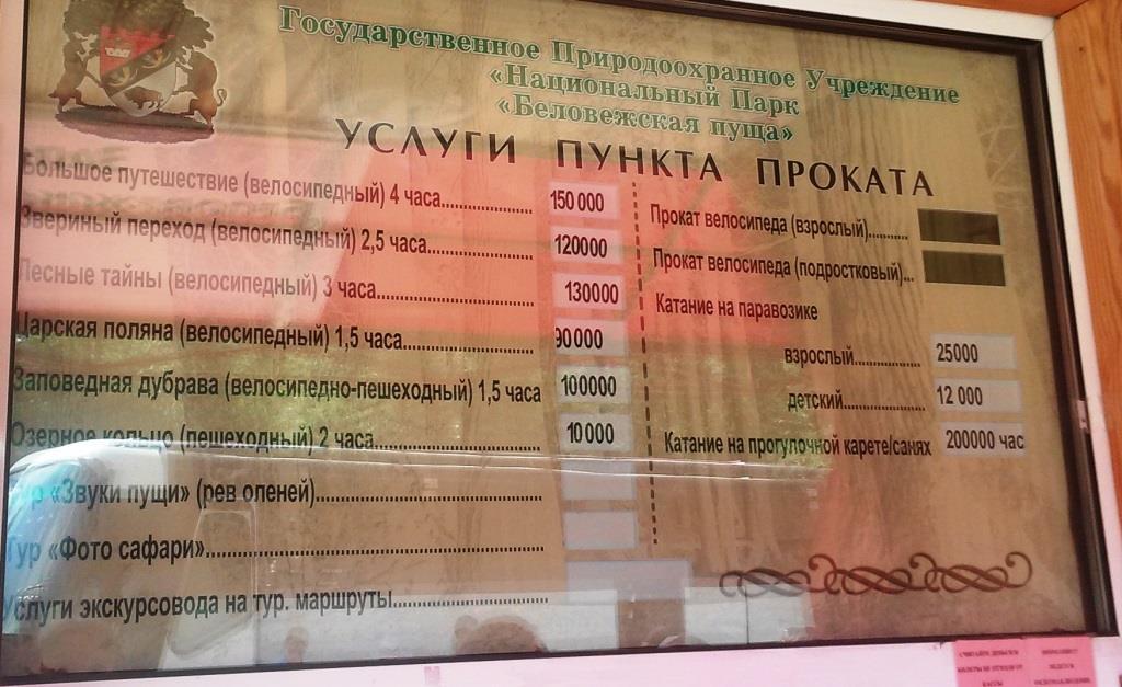 Ціни на прокат велосипедів в Біловезській Пущі